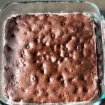 perfectly baked brownies in a glass pan with chocolate chips visible